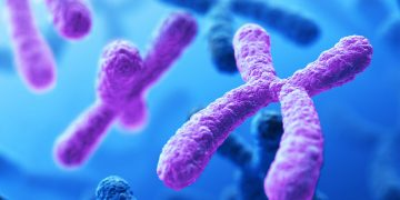 İnsan Kromozomu İlk Defa Tamamen Dizilendi!