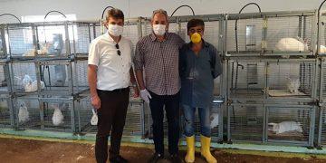 Türkiye'nin İlk Tavşan Çiftliği Kuruldu!
