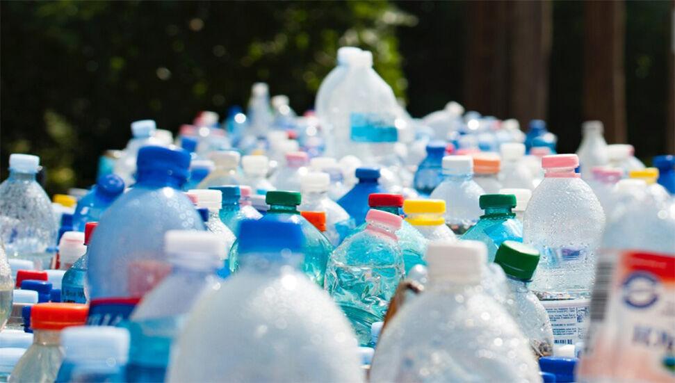 Türk Öğrenci, Hayvanların da Yiyebildiği Plastik Malzeme Üretti!