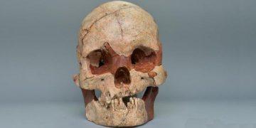 16.000 Yıllık İnsan Kafatası Sofili Bulundu