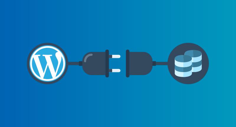 WordPress Web Siteleri Nasıl Yedeklenir ?